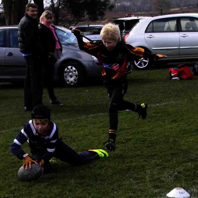 SRFC Under 10s v Bees, Sunday 22 March 2015