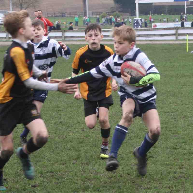 SRFC Under 12s v Caldy