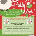 Needham's Woolly Pully