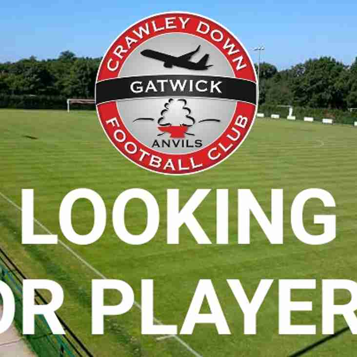 Players wanted for next seasons  U16  squad needed  (current U15 age group/ current school year 10)