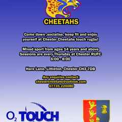 Chester Cheetahs want you!