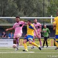 THIS WEEKEND'S MATCH PREVIEW – AFC SUDBURY (HOME) KO 3.00 PM