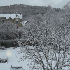 Snow the Gytes 12 January 2017