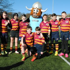 P7 at Warriors Tourney 25 March 2017