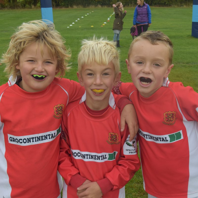 Grocontinental mini rugby festival 2017