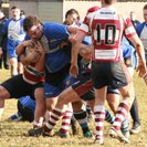 Brackley 33 – 10 Wellingborough OG's
