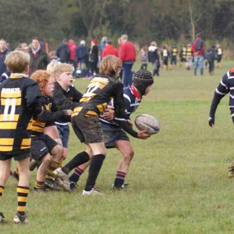 U11's Vs Telford . 04.11.2012