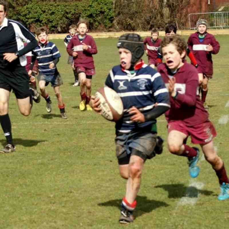 U11's 7's V Bromsgrove School Tournament 16.03.2013