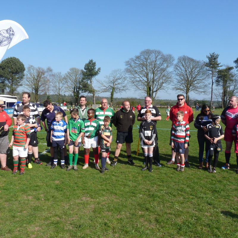 Round up of our Kingswood Mini's Festival (s) April 2017