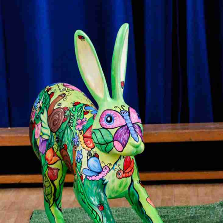Design a GoGoHare for Holt Rugby Club