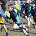 New Milton & District RFC vs. Training