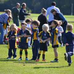 Mini Rugby Begins!