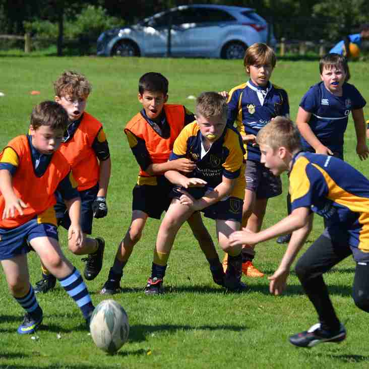 Mini & Junior Rugby Starts Sunday 3rd September 2017