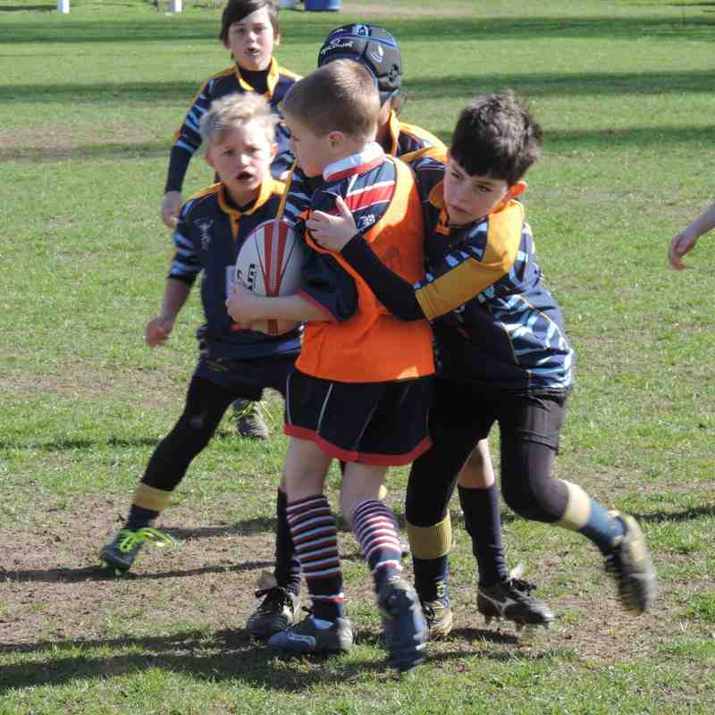 staines festival April 12th 2015 U9s