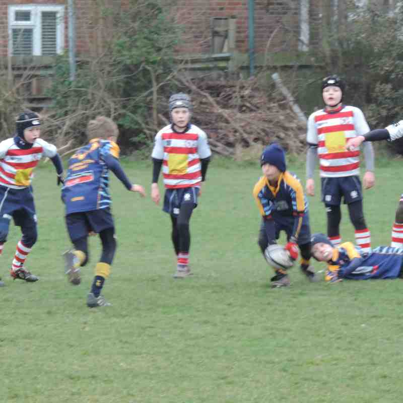 15 March 2015 Middlesex U9s festival A team @ Wasps