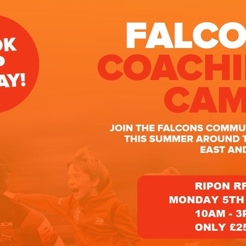 Falcons Coaching Summer Camp