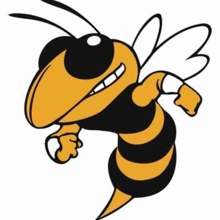 Buzz The Hornet U12 Festival - This Sunday !!
