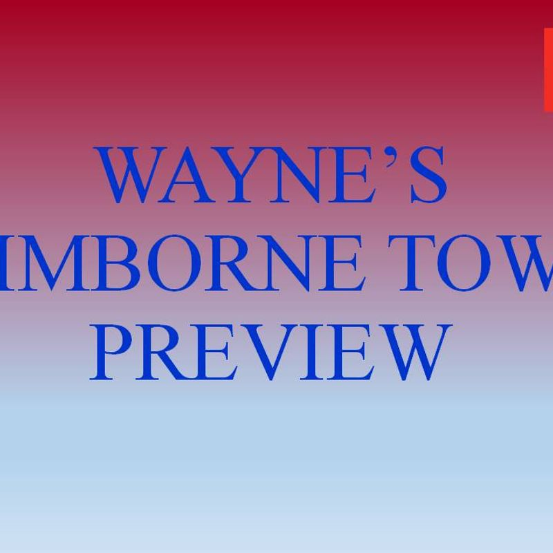 Wimborne Town Preview