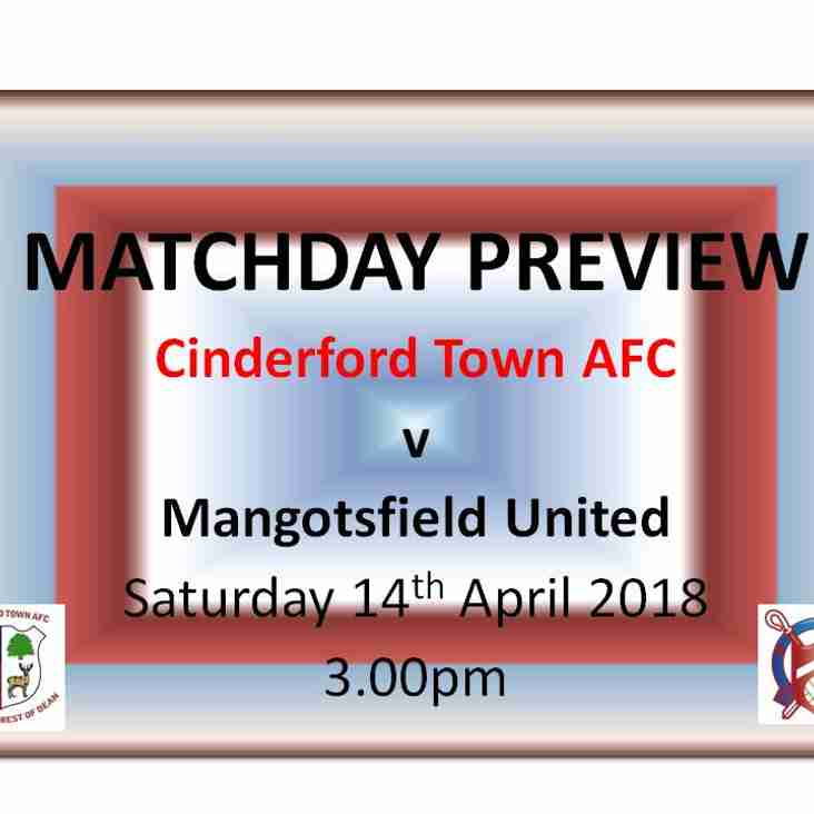 Cinderford Town Preview