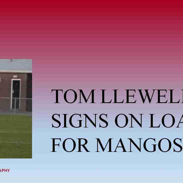 Tom Llewellyn