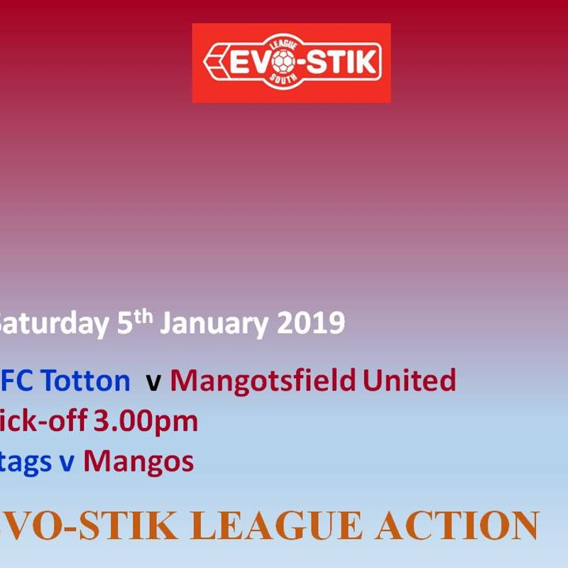 AFC Totton Preview