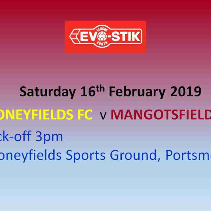 Moneyfields Preview