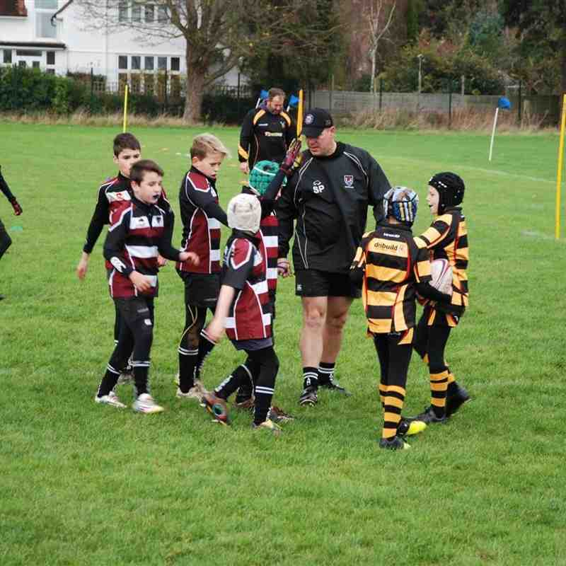 Taunton U11s v Hornets (at Taunton School) Nov 2015