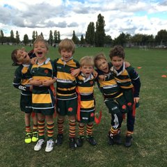 Under 7s at Rosslyn Park festival, October 2016