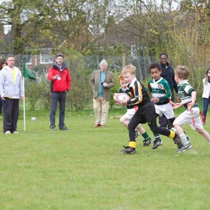 U7 Cougars at London Irish Festival