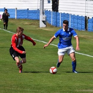 STRONG SHINERS SHOCK NOMADS