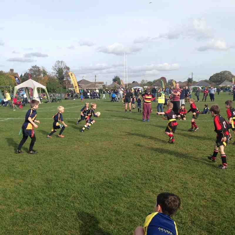 U7's New Milton Festival Oct 2015