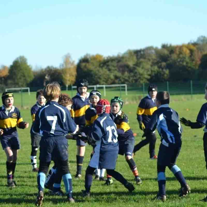 Under 10's v Peterborough Lions November 2013