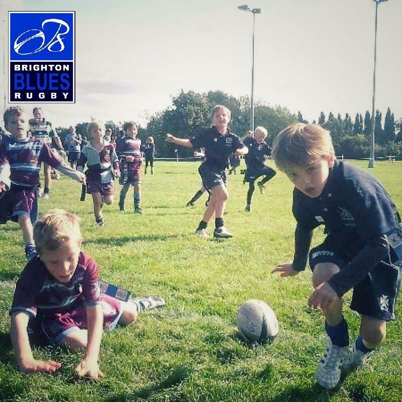 Brighton Blues Summer Rugby Camp