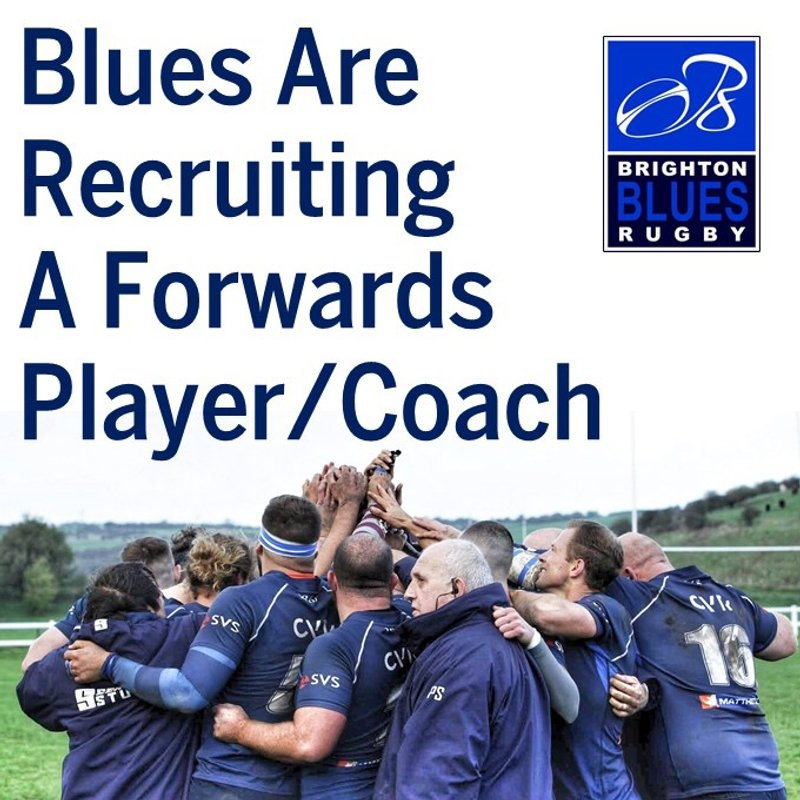 Blues Looking for a Forwards Player Coach
