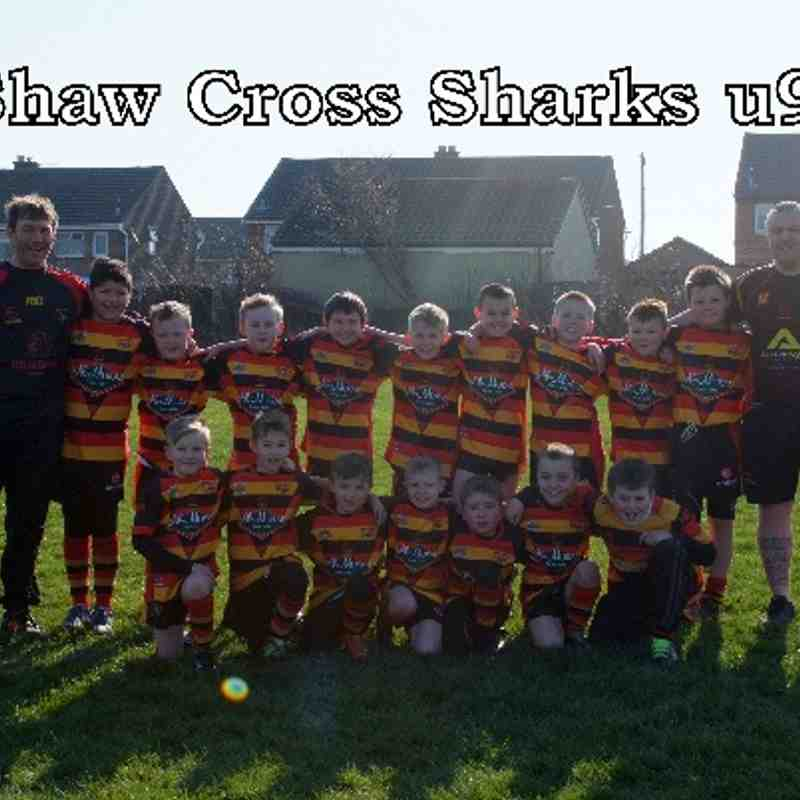 shaw cross sharks u9 (2014)