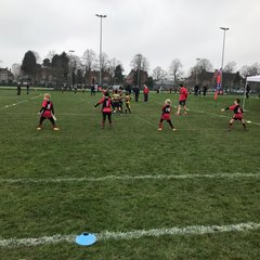 Rugby Tournament March 2017
