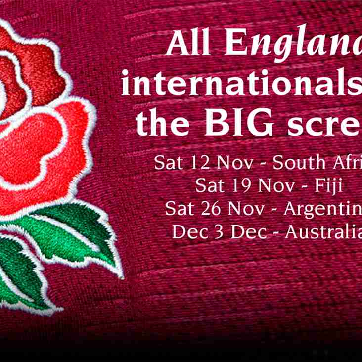 England Autumn Internationals