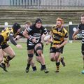 O'Donnell's double stings Hornets' hopes