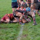 1sts- Back On Track with Bonus point home win