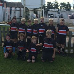 Rugby Lions Tournament Oct 2016