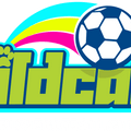 Wildcats Girls Football Saturday 09:00 - 10:00 AM