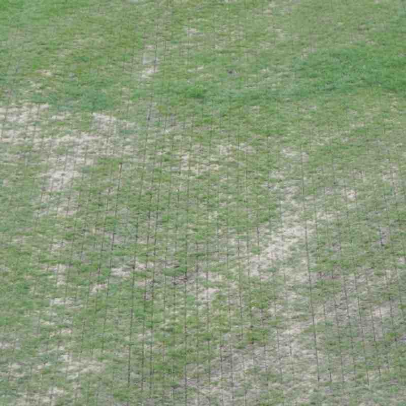 Pitch before and after