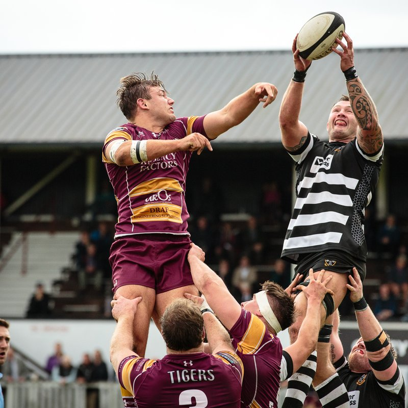 Otley score six tries but still lose