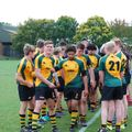 Like to watch the Wolfpack of the future under lights?   ...tonight 7.30 KO V Framlingham College.