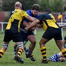 1st XV Let slip the win at Braintree