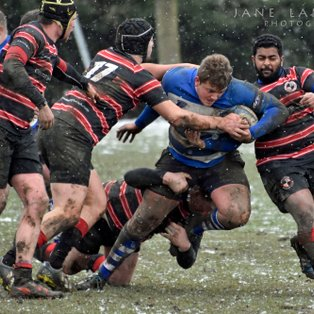 1st XV take maximum points at Home to Millwall