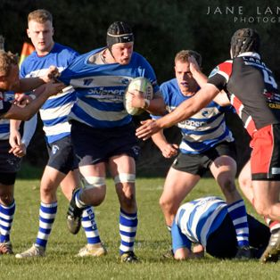 Maldons 1st XV come a close 2nd to Campion at Home