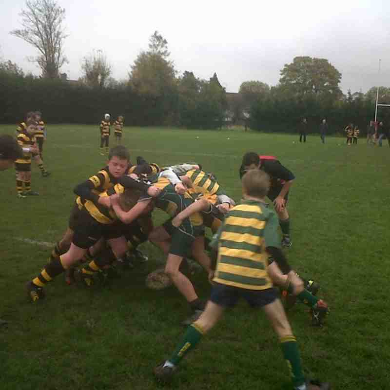 Barnes Under 11s vs Wasps. 17/11/13. Barnes wins: two tries to one..
