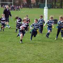 Support the Minis at Malton Show