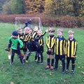 Under 10 Lions beat warley blues 9 - 5
